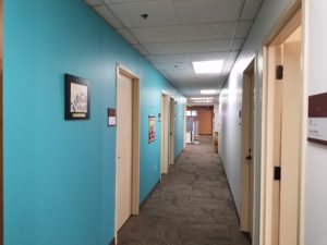 Bright new hallway for an office suite in Seattle, Washington